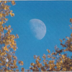 Autumn Moon Mousepad USA