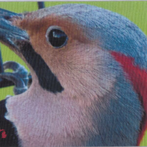Flicker Head Michigan Mousepad