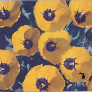 Tulips in Michigan Mousepad USA